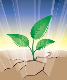 Planta crescendo a partir da fenda no solo