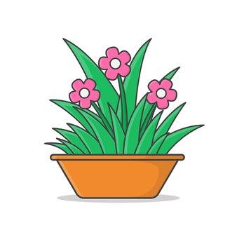 Planta da casa no pote.