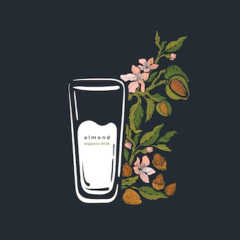 Planta de amêndoa e copo de leite ramo verde aroma, nozes, flora folha verde