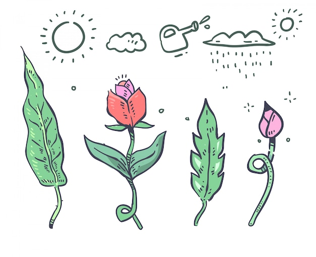 Planta de estilo dos desenhos animados