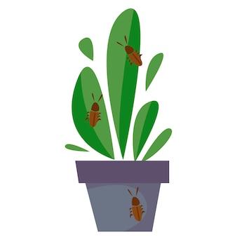 Planta doméstica infectada. a praga se arrasta para uma flor. ilustração em vetor de um estilo simples.