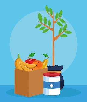 Planta, lata de doação e caixa com frutas, design colorido