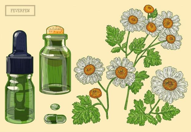 Planta matricária e dois frascos de vidro verde