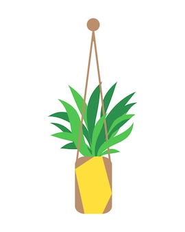 Plantador detalhado suspenso isolado feito de fio de algodão, plantas em vasos para interior e exterior ou escritório, jardim paisagístico.