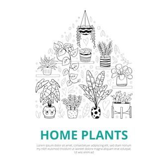 Plantas caseiras em estilo doodle