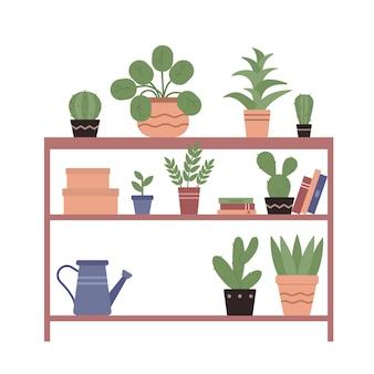 Plantas caseiras em vasos de cerâmica livros regador em prateleiras de madeira de jardim natural