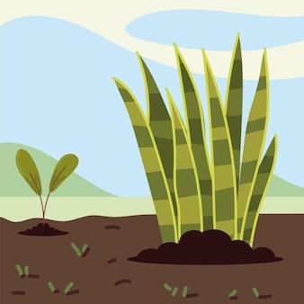Plantas crescendo no solo