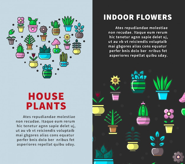 Plantas da casa e cartazes de flores interiores