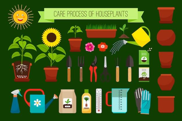 Plantas de casa cuidados ícones de processo e flores na coleção de potes