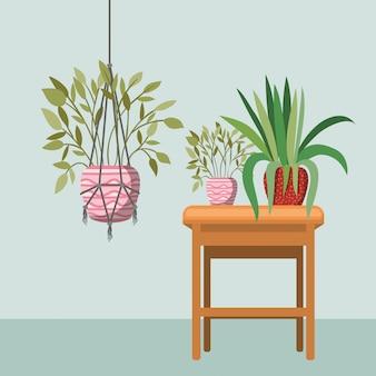 Plantas de casa em cabides de macramé e cadeira de madeira