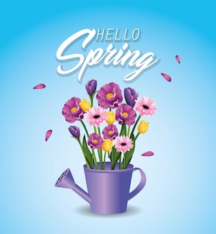 Plantas de flores de primavera dentro de regador