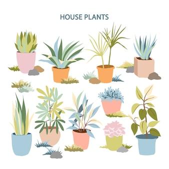 Plantas de jardim de paisagem interior e exterior desenhada mão em vaso