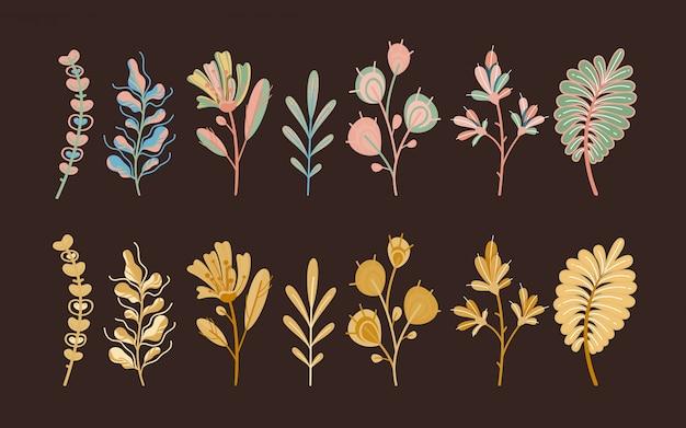 Plantas de outono. folhas abstratas bonitos da floresta e cereal nas flores ecológicas do jardim botânicas no conceito escuro do fundo
