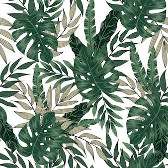 Plantas e folhas tropicais