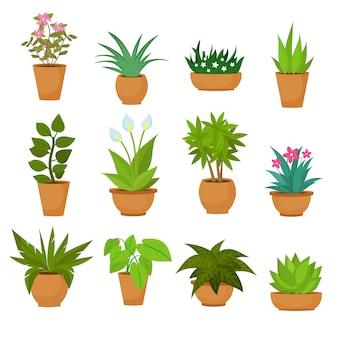 Plantas em pasta do jardim interno e exterior da paisagem isoladas no branco.