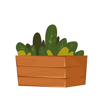 Plantas em uma caixa de madeira plantas caseiras jardinagem em casa ilustração vetorial de flores