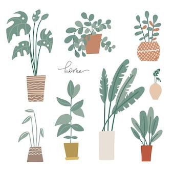 Plantas em vasos com palmeiras em estilo escandinavo e plantas caseiras desenhadas à mão