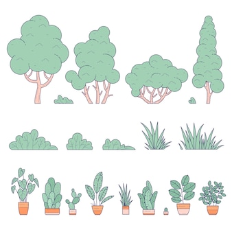 Plantas envasadas e terrestres de interior e exterior, jardim doméstico e paisagístico.