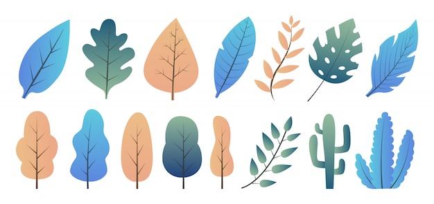 Plantas modernas, árvores e arbustos.