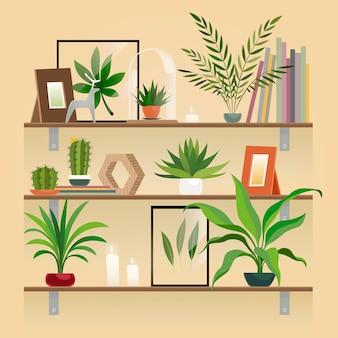 Plantas na prateleira. plantas de casa em panela nas prateleiras. jardim interno em pasta plantio, vetor de elementos de decoração para casa.