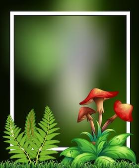 Plantas naturais e quadro verde cogumelo