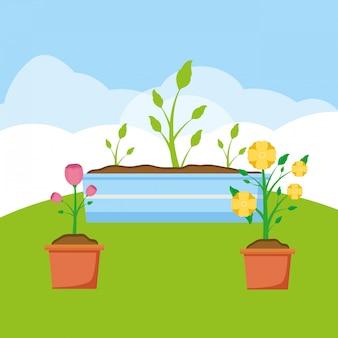 Plantas no jardim