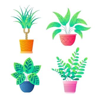 Plantas para casa em vasos de flores coleção de vetores.