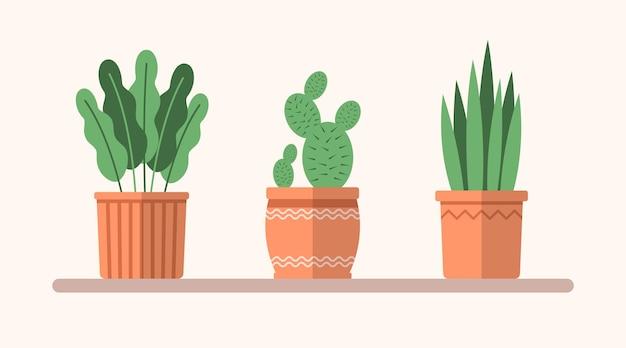 Plantas planas verdes de vetor em vasos na prateleira. ilustração interior simples. elementos decorativos florais para design, jogo, conceitos.