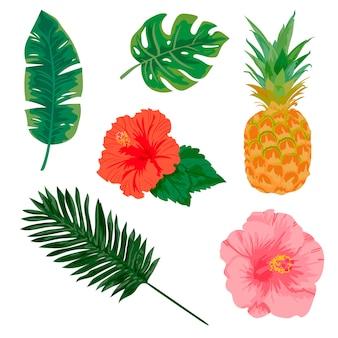 Plantas tropicais e elementos