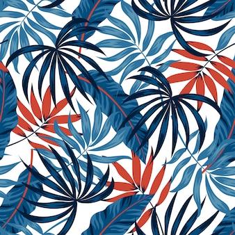Plantas tropicais e folhas em um fundo branco