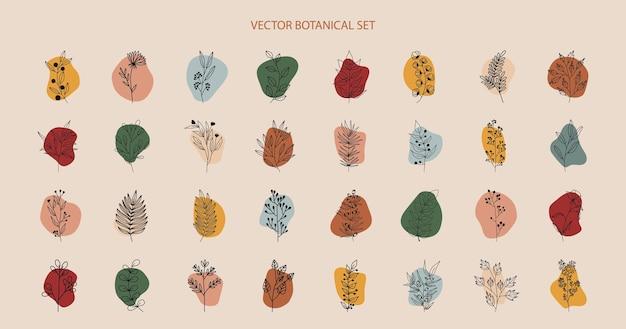 Plantas tropicais, folhas e ramos com flores, conjunto de elementos nerd com círculos de cores diferentes