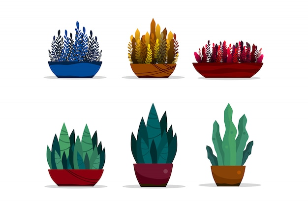 Plantas verdes definidas em vasos isolados no fundo branco