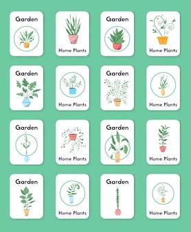 Plantas verdes em vasos de objetos envasando árvores vasos de flores pendurados estilização interior jardim doméstico plantando flores planta de casa em design de interiores vegetação no escritório