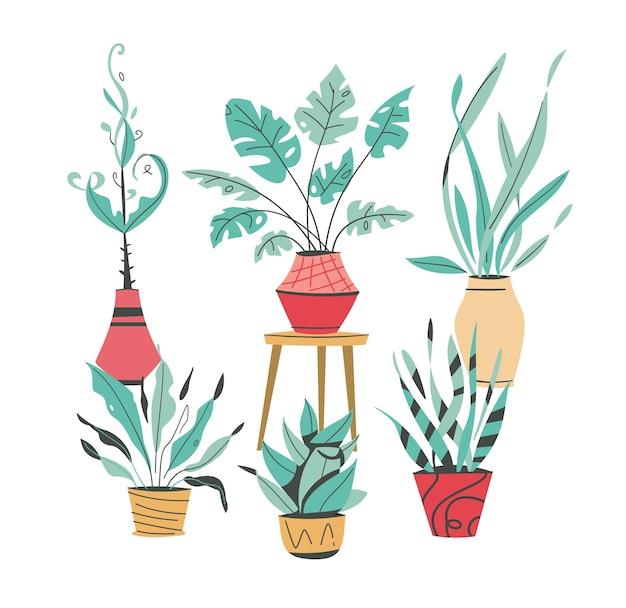Plantas verdes em vasos envasando árvores vasos de flores pendurados estilo interior jardim doméstico plantando flores planta de casa em design de interiores vegetação no escritório