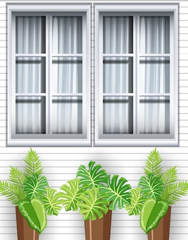Plantas verdes na frente da casa