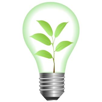 Plante uma lâmpada em um fundo branco. ilustração vetorial