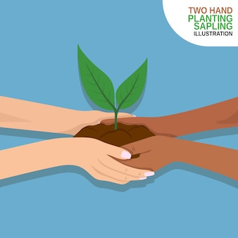 Plantio de rebento dois mão juntos design plano premium
