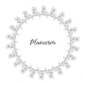 Plumeria. colares de flores tropicais no havaí, bali, indonésia, sri lanka. ilustração
