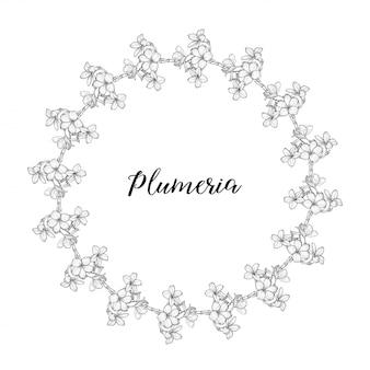 Plumeria flores desenho e desenho com arte linear uma coroa de flores.