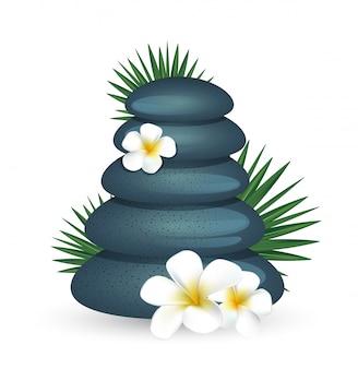 Plumeria flores e pedra zen isolado no branco
