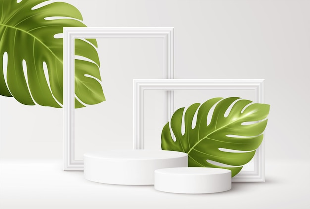 Pódio de produto branco realista com molduras brancas e folhas verdes de monstera tropical isoladas em branco