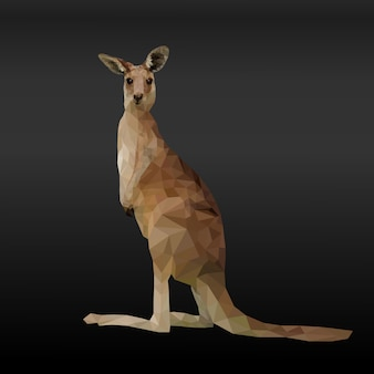 Poligonal geométrica de canguru