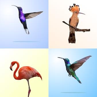 Poligonal geométrica de pássaro e flamingo