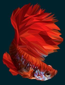 Poligonal ilustração de betta ou peixe-lutador siamês.