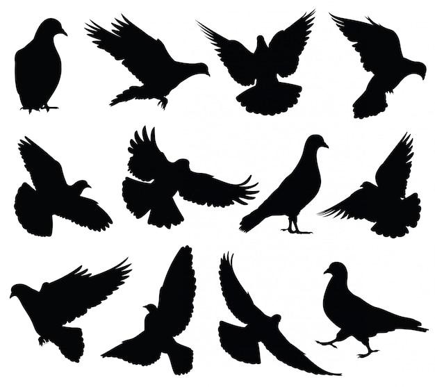 Pomba voando silhuetas isoladas. pombos definir símbolos de amor e paz.