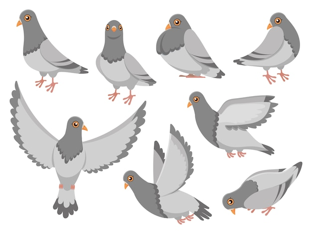 Pombo dos desenhos animados. cidade pomba pássaro, pombos voadores e cidade aves pombas isolaram conjunto de ilustração