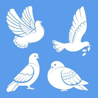 Pombo ou pomba, pássaro branco voando com asas abertas no céu ou sentado conjunto.