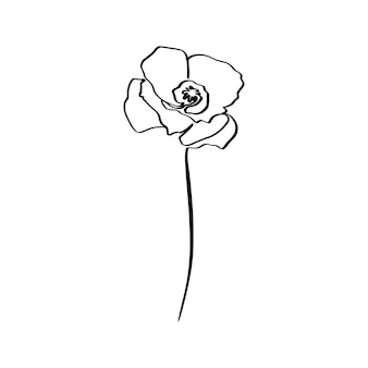 Poppy flower é uma arte de linha. planta abstrata do vetor em um estilo moderno e minimalista. para a criação de logotipos, convites, pôsteres, cartões postais, impressões em camisetas.