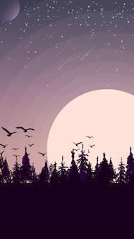 Pôr do sol em uma floresta de pinheiros