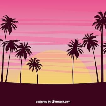 Pôr do sol, fundo, palma, árvores